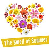 Play & Download The Smell of Summer by Various Artists | Napster