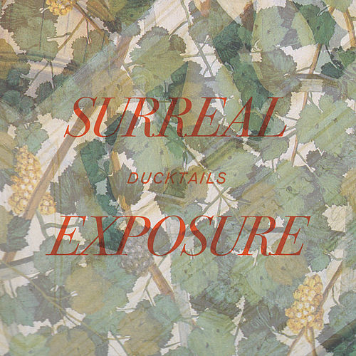 Surreal Exposure by Ducktails
