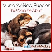 Play & Download Music for New Puppies - The Complete Album by Relaxmydog | Napster