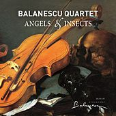 Play & Download Angels & Insects by Balanescu Quartet | Napster