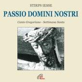 Passio Domini nostri by Enrico de Capitani Stirps Iesse