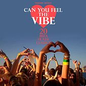 Can You Feel the Vibe (20 Ibiza House Classics) by Various Artists
