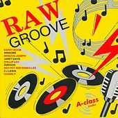 Play & Download Raw Groove by Various Artists | Napster