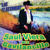 Play & Download Las 12 Hectarias by Saul Viera el Gavilancillo | Napster