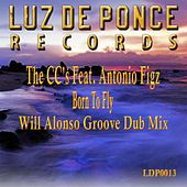 Born To Fly (Will Alonso Groove Dub Mix) by C.C.S.