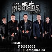 Play & Download Como Perro Amarrado by Los Inquietos Del Norte | Napster
