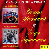 Play & Download Lo Mejores de la Cumbia by Various Artists | Napster