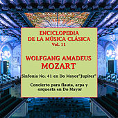 Enciclopedia de la Música Clásica Vol.11 by Various Artists