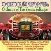 Play & Download Concierto de Año Nuevo en Viena by Wiener Volksopernorchester | Napster