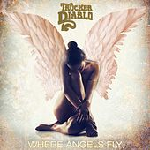 Play & Download Where Angels Fly by Trucker Diablo | Napster