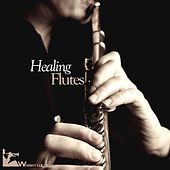 Play & Download Healing Flutes by Various Artists | Napster
