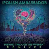 Pushing Through the Pavement (Remixes) by The Polish Ambassador