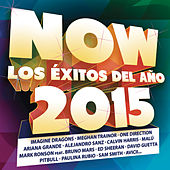Now 2015 de Various Artists