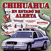 Play & Download Chihuahua... En Estado de Alerta by Various Artists | Napster