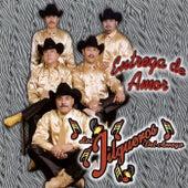 Play & Download Entrega de Amor by Los Jilgueros Del Arroyo | Napster