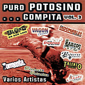 Puro Potosino... Compita, Vol. 3 by Various Artists
