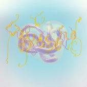Notget (Lotic Keptsafe Version) von Björk