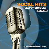 Vocal Hits Velvet Grooves Volume Too! by Various Artists