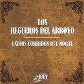Play & Download Exitos Corridos del Norte by Los Jilgueros Del Arroyo | Napster
