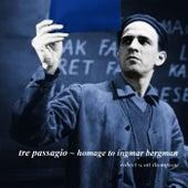Tre Passagio - Homage To Ingmar Bergman by Robert Scott Thompson