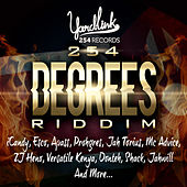 254 Degrees Riddim by Various Artists