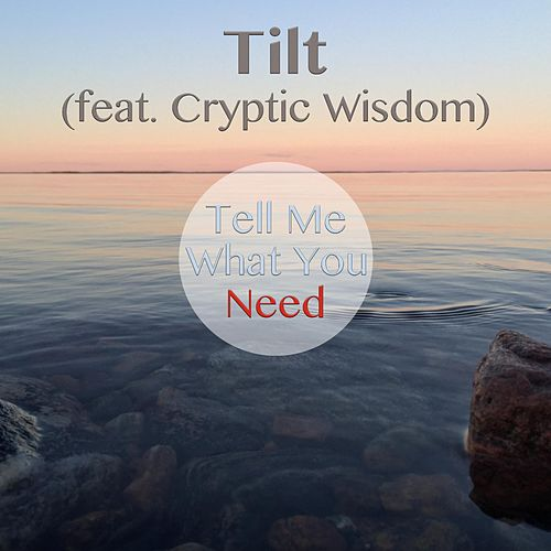 Tell Me What You Need (feat. Cryptic Wisdom) by Tilt