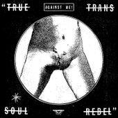 True Trans Soul Rebel - Single by Against Me!