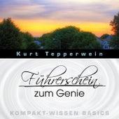 Führerschein zum Genie - Kompakt-Wissen Basics by Kurt Tepperwein