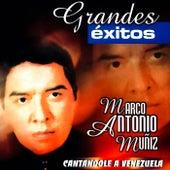 Play & Download Cantandole A Venezuela by Marco Antonio Muñiz | Napster