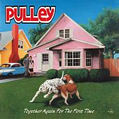 Play & Download Together Again for the First Time by Pulley | Napster