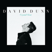 Play & Download Crystal Clear by David Dunn | Napster
