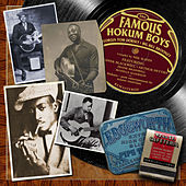 Play & Download The Famous Hokum Boys by Various Artists | Napster