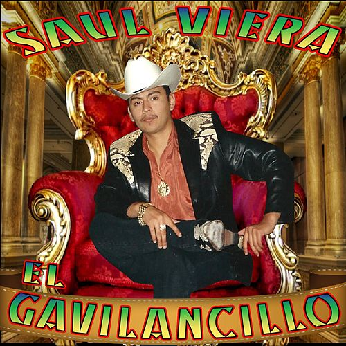 Play & Download 15 Exitos Con Banda by Saul Viera el Gavilancillo | Napster