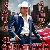 Play & Download 20 Exitos Inmortals by Saul Viera el Gavilancillo | Napster