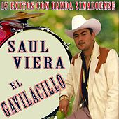 Play & Download 15 Exitos Con Banda Sinaloense by Saul Viera el Gavilancillo | Napster