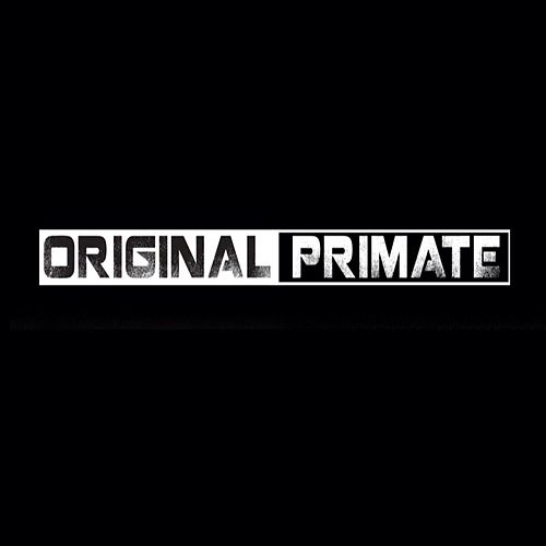 Play & Download Reflex / Artery by Original Primate | Napster
