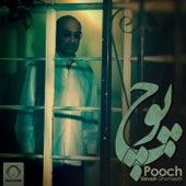 Pooch by Siavash Ghomayshi