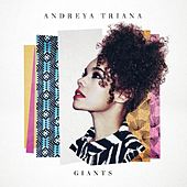 Lullaby (Shigeto Remix) by Andreya Triana