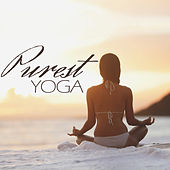 Purest Yoga by Various Artists
