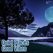 Play & Download Quiet Places Good Vibes by Various Artists | Napster