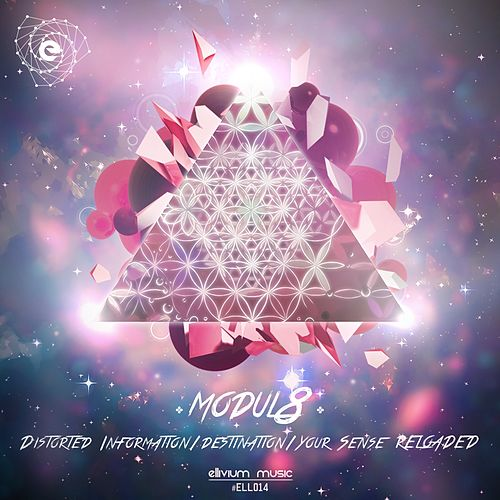 Distorted Information - Single by Modul8