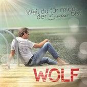 Play & Download Weil du für mich der Sommer bist by Wolf | Napster