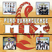 Play & Download Puro Duranguense Mix by Various Artists | Napster