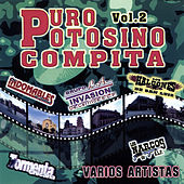 Puro Potosino Compita, Vol. 2 by Various Artists