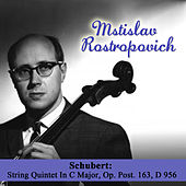 Play & Download Schubert: String Quintet In C Major, Op. Post. 163, D 956 by Mstislav Rostropovich | Napster