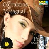 Pesele a Quien Le Pese by Los Corraleros De Majagual