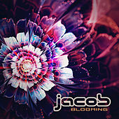 Blooming by Jacob