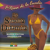 Play & Download La Reina de la Cumbia by La Sonora Dinamita | Napster