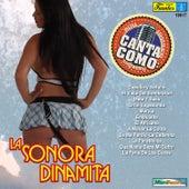 Canta Como - Sing Along: La Sonora Dinamita by La Sonora Dinamita