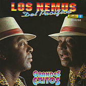 Grandes Exitos by Los Nemus Del Pacifico